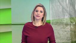 Gisele Loeblein fala sobre os cortes no orçamento para o setor do agronegócio