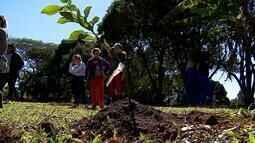 Projeto em escolas de Criciúma, em SC, conscientiza para preservação do meio ambiente