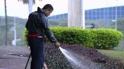 Palácio do Buriti irriga plantas em meio à pior crise hídrica do DF