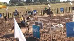 Grande Final Rural do Campeonato Baiano de Team Penning será realizada em Feira de Santana