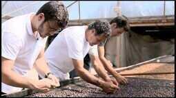 A Força do Agronegócio: nova geração do trabalho no campo no ES aposta no estudo