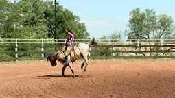Cavalos para rodeio são tratados como atletas
