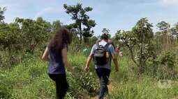 Verdejando discute a preservação da Floresta Nacional de Brasília