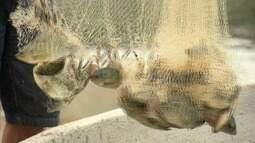 Projeto de reúso da água dribla efeitos da seca no sertão cearense