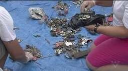 Mutirão de limpeza em São Vicente tem resultado impressionante
