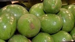 Quadro Dia de Feira, em Campo Grande, fala sobre o abacate