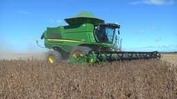Mirante Rural destaca a abertura oficial da colheita de soja no sul do Maranhão