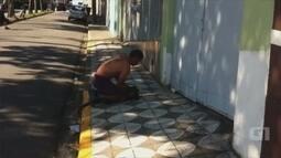 Macaco leva choque ao andar sobre fios elétricos em bairro de Sorocaba; vídeo
