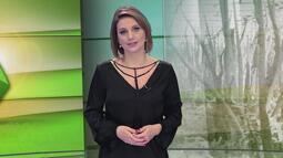 Gisele Loeblein comenta sobre os efeitos da greve dos caminhoneiros no agronegócio