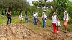 Agricultores potiguares recebem capacitação técnica para investimentos no campo