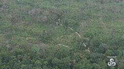 Programa do MPF identifica áreas e responsáveis por desmatamentos na amazônia legal