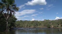 Estudos da Embrapa apontam que mais da metade do bioma natural do oeste está conservado