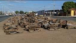 Comércio de madeiras é grande na véspera do São João