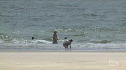 Em tempos de chegada de turistas, maioria das praias de São Luís estão impróprias