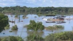 Defesa Civil mantém alerta apesar da redução do nível do Rio Branco em Roraima