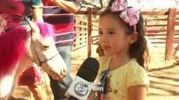 Animais curiosos despertam o interesse das crianças na Expocrato