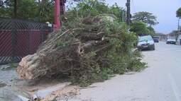 Mudança no tempo e ventos fortes provocam estragos na região