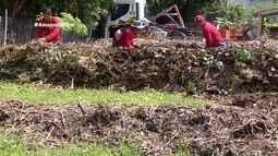 Parte 2: Em Macapá, projeto reutiliza podas de árvores como adubo