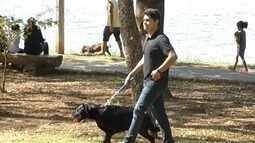 Coluna 'É o Bicho' mostra dicas para passear com os pets em segurança