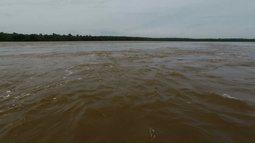 Pesquisadores fazem levantamento da qualidade da água do Rio Iguaçu