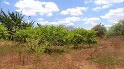 Impasse em pagamento está impedindo projeto de agricultores em Mossoró