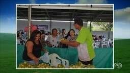 Festa da Mangaba incentiva preservação e cultivo da mangabeira, em Niquelândia