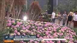 Festa das Flores tem exposição de mais de 25 mil espécies ornamentais em Joinville