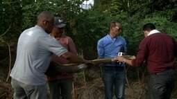 Agricultor de Rio Largo colhe inhame de mais de 12 quilos