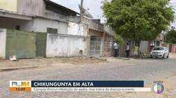 Campos, RJ, diminui infestação dos Aedes, mas índice de chikungunya aumenta