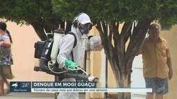 Registros de casos de dengue dobram em Mogi Guaçu