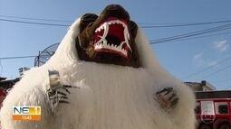 Grupos renovam tradição da La Ursa no carnaval de Pernambuco