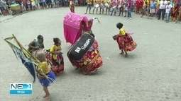 Desfile das Burrinhas faz a festa dos foliões em Bom Jardim