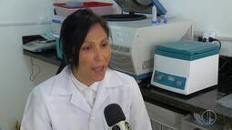 Pesquisa relaciona uso de agrotóxicos ao desenvolvimento da obesidade e da diabetes
