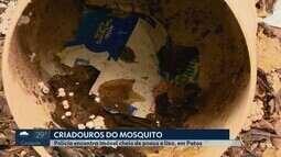 Dono de imóvel com o quintal cheio de lixo e focos da dengue é preso em Patos de Minas