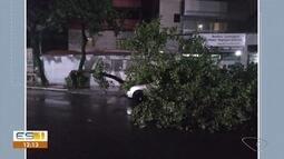 Ventos fortes derrubam árvore em cima de carro em Vitória, ES