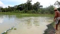 Parte 1: Curso em Presidente Figueiredo estimula a produção de peixes no Amazonas