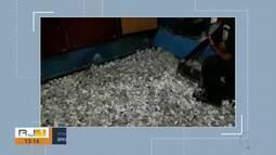 BPRv aprende 10 mil cápsulas de cocaína e 15 mil papelotes de maconha na RJ-124