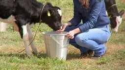 Pecuarista não pode se descuidar da qualidade da água dos animais