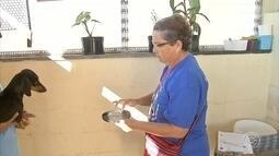 Agentes de saúde promovem ação de combate ao Aedes aegypti em Jundiaí