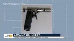 Polícia encontra arma dentro de galinheiro após suposta briga entre marido e mulher