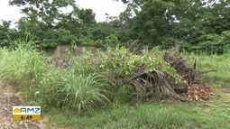 Moradores reclamam de acúmulo de lixo em terrenos baldios em Boa Vista