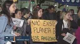 Manifestantes fazem ato em defesa da Amazônia em Santos