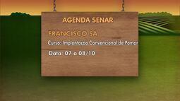 Confira os cursos disponíveis na Agenda Senar