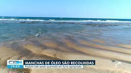 Medidas adotadas pelo governo para dar fim em manchas de óleo nas praias