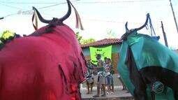 O tradicional carnaval de Santo Antônio de Leverger - Bloco 03