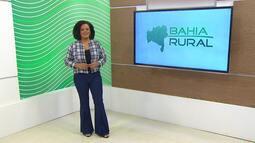 Bahia Rural - 02/08/2020 - Bloco 1