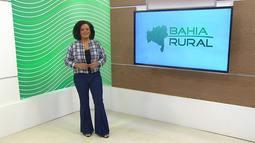 Bahia Rural - 02/08/2020 - Bloco 2