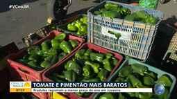Economia: Tomate e pimentão têm reajuste no Mercado Produtor de Juazeiro
