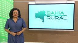 Bahia Rural - 25/10/2020 - Bloco 2