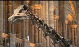 Dinossauro mais famoso de Londres vai ser substituído em 2017